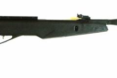 DSCN3904