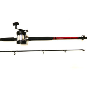 Shakespeare Firebird Boat Rod & Reel Combo
