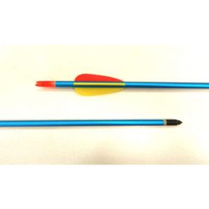 Heavy Compound Bow Arrow